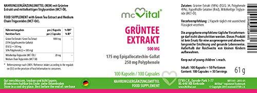 Grüntee Extrakt 500 mg – 175 mg Epigallocatechin-Gallat, 250 mg Polyphenole – 100 Kapseln
