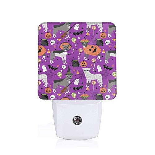 ull Halloween Costume Dog Vampire Ghost Mummy Purple Auto Senor Dusk to Dawn Night Light Plug in for Baby, Kids, Children's Room ()