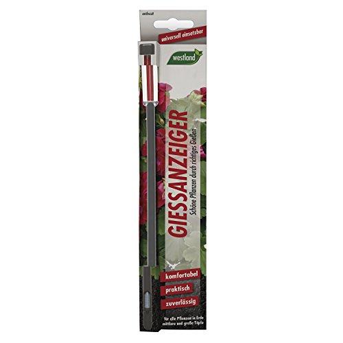 Westland Gießanzeiger für alle Pflanzen in Blumenerde, Kein Batteriebetrieb, Kunststoff, Höhe: 26 cm, Anthrazit, 6 Stück - Hoch 6
