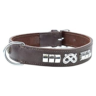 Avon Pet Products Staffy Knot and Studded Chrome Leather Dog Collar, 20-Inch, Brown 7