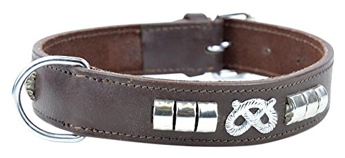 Avon Pet Products Staffy Knot and Studded Chrome Leather Dog Collar, 20-Inch, Brown 1