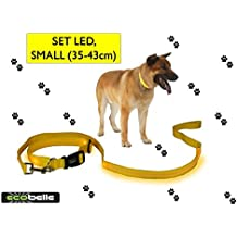 ECOBELLE® set Collar de perro + Correa de perro luminoso LED, Alta Visibilidad y Securidad por la noche, 3 Modos de luz, USB Recargable (2 cables USB incluidos), color AMARILLO. Tamaño de correa 1.20m, Tamaño de collar PEQUEÑO 35-43cm (regulable)