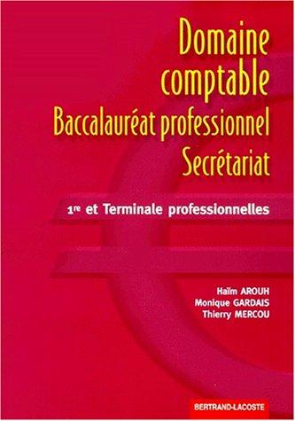 Domaine comptable : baccalauréat professionnel secrétariat, première et professionnelles