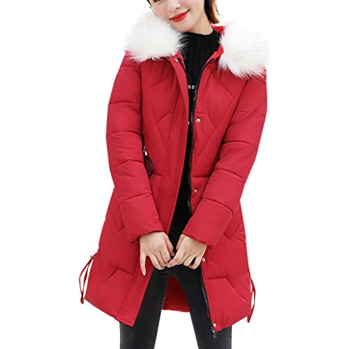 MDenker Koreanischer Stil Damen Kleider Daunenjacke Lang Mantel Daunenmantel Steppmantel Wintermantel Mit Kapuze Slim Fit Steppjacke zur Stiefeletten Winter Strumpfhosen Edlen Pumps