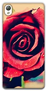 The Racoon Lean printed designer hard back mobile phone case cover for Sony Xperia Z3. (Rose)