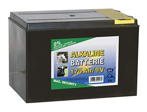 Kerbl 9V Alkaline Batterie Power Block für Weidezaungeräte Trockenbatterie