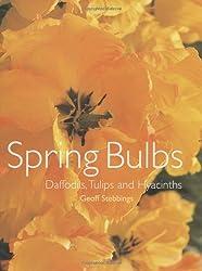 Spring Bulbs: Daffodils, Tulips and Hyacinths