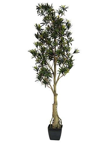 artplants – Künstlicher Podocarpus Amando, grün, 115 cm – Deko Steineiben Pflanze/Kunstbaum