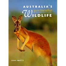 Australia's Spectacular Wildlife
