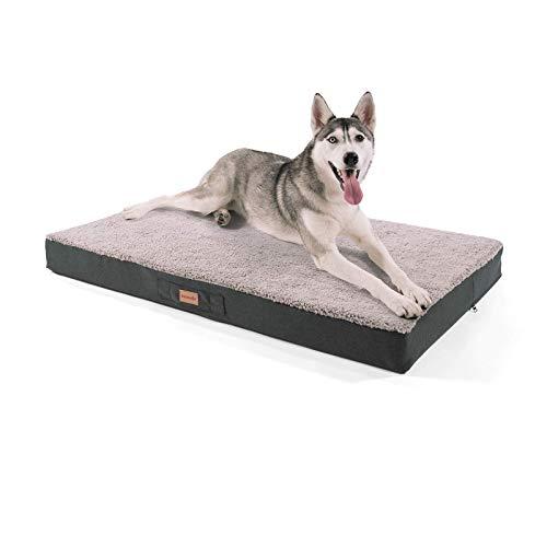 brunolie Balu Hundebett, waschbar, orthopädisch und Rutschfest, Hundekissen mit kuscheligem Plüsch, Größe XL, Grau