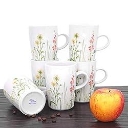 Kahla 39E103A50002C Wildblume rot Becherset Bunte Kaffeebecher für 6 Personen 350 ml Henkelbecher Porzellanbecher Set 6-teilig Tee Kakao Tassenset