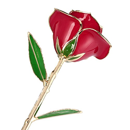 YKS Rosa Bañada en Oro de 24 K, mejor...
