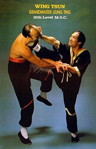 Preisvergleich Produktbild The Close-Body Kick Poster