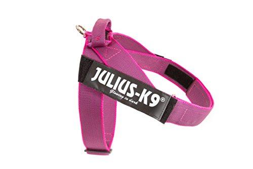JULIUS-K9, 16501-IDC-PN-15, Color&Gray IDC-Gurtbandgeschirr, Größe 1, pink-grau