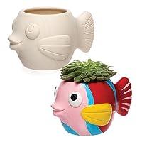 Baker Ross Ltd AR523 Fish Ceramic Flowerpots