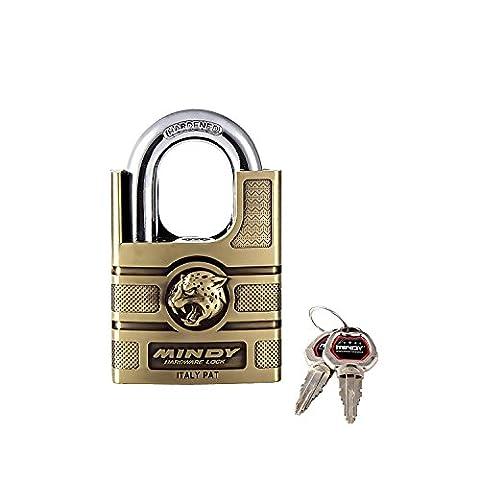 Mindy Schloss mit Schlüssel Zink Legierung eingegeben verschiedenen Vorhängeschloss, 1er Pack, AF16–50