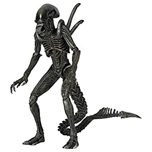 Neca - Figurine Alien Serie 7 AVP - Warrior Alien 18cm - 0634482516010 4