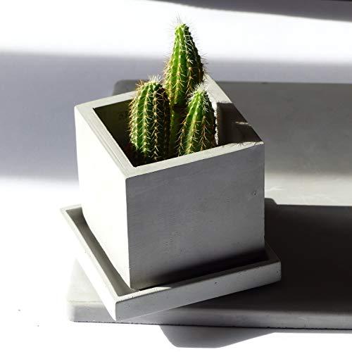Modern Grau Würfelbeton-Pflanzgefäß Mit Abtropföffnungen Und Untertasse, Ideal Für Kakteen