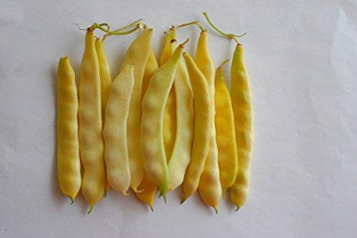 Haricot jaune\