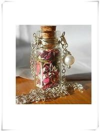 Vial de vidrio botella de cristal collar collar Make a Wish collar con pequeño secado orgánico
