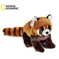 National Geographic 8004332707165 Lelly Medium Red Panda (Ngs), Natural