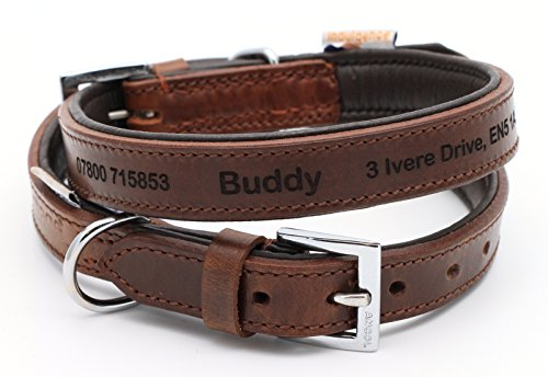 Ancol Vintage - Personalisiertes Premium Leder Hundehalsband Welpenhalsband