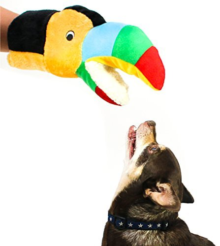 Zoom IMG-1 bis dog tommy the toucan