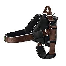 HUNTER Neopren Expert Nylon Harness, 84 x 120 cm, 38 mm, 2X-Large, Black/Brown