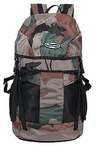POLE STAR Polyester 44 Ltr Green Trekking Backpacks