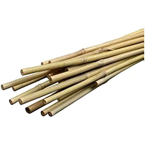 BOND MANUFACTURING CO - Bamboo Plant Stakes, 2-Ft., 12-Pk.