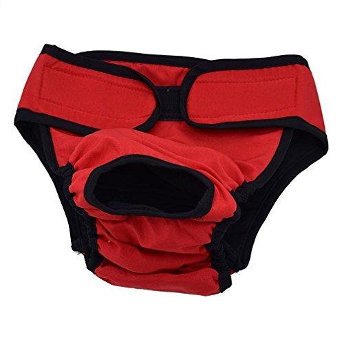 Bild von: Generische Hundeschutzhose für Hündinnen, hundewindeln Inkontinenz Rüden, Umfang 43-60cm einstellbar, Rot