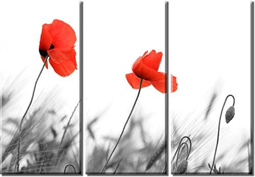 Bild Sensations gerahmt Große 3-Panel Rot Poppy Flower Field Canvas Print -