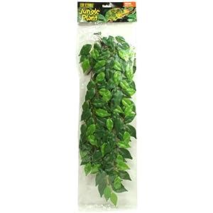 Exo Terra Regenwaldpflanze Fikus groß