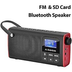 Avantree Radio FM & Lecteur Audio Micro SD, Enceinte Filaire & sans-Fil Bluetooth 3-en-1, Mémorisation & Scan Automatique des Stations, Légère et Portable - SP850