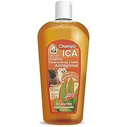 ICA CHP24 Champú Anti Lágrimas con Aloe Vera para Perros y Gatos