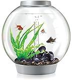 biOrb Classic Aquarium, 40 x 42 cm, 30 Litre, Silver, LED Light