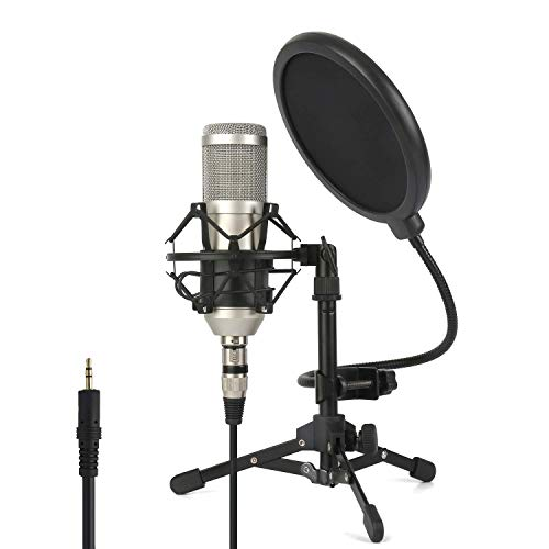 ZINGYOU Professional Studio Mikrofon, ZY-801 Desktop-Computer Niere Kondensator-Mikrofon mit Stativ für PC-Aufnahme, Rundfunk (Aufnahme-mikrofon Für Studio)