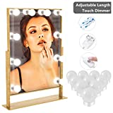 YUNLIGHTS Vanity Mirror Lights Kit, Makeup Lights with 10 Dimmable Light Bulbs and Power Supply, 14.5FT max. LED Hollywood DIY Vanity Lights for Makeup Mirrors, Bathroom Lighting