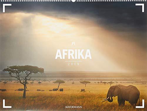 Afrika - Ackermann Gallery 2019, Wandkalender im Querformat (66x50 cm) - Großformat-Kalender / Hochwertiger Panorama-Kalender mit Monatskalendarium