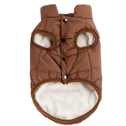 Y56 stylische, warme Winterjacke für Ihr Haustier, für kleine Hunde und Katzen, weich und warm, Fleece-Jacke für Hunde