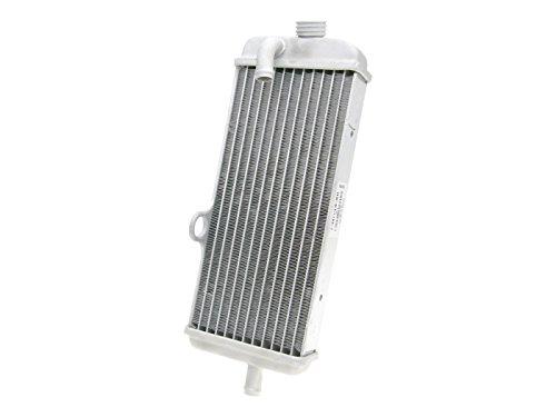 Kühler OEM für Malaguti XTM, XSM, MBK X-Limit, Yamaha DT 50