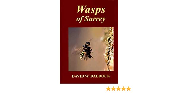 Splendid Wasps Of Surrey The Surrey Wildlife Atlas Project Amazoncouk  With Exciting Wasps Of Surrey The Surrey Wildlife Atlas Project Amazoncouk David  Baldock Graham A Collins Surrey Wildlife Trust  Books With Breathtaking Rogers Garden Stone Also Mulch Garden In Addition Asda Garden Parasol And Garden Design Ideas Low Maintenance As Well As Bents Garden Center Additionally Restaurants In Covent Garden Market From Amazoncouk With   Exciting Wasps Of Surrey The Surrey Wildlife Atlas Project Amazoncouk  With Breathtaking Wasps Of Surrey The Surrey Wildlife Atlas Project Amazoncouk David  Baldock Graham A Collins Surrey Wildlife Trust  Books And Splendid Rogers Garden Stone Also Mulch Garden In Addition Asda Garden Parasol From Amazoncouk