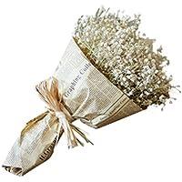 FNKDOR Gypsophila naturel séché fleur bébé souffle Home Decor Sky Star-cadeau paquet (blanc)