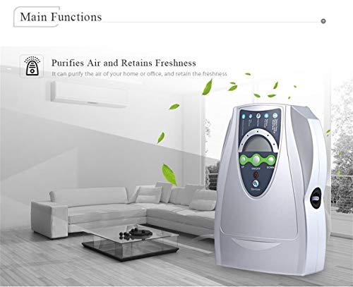 XYYMC 500 MG/h Ozonizador, Generador de Ozono Doméstico Digital Negative Ion purificador de Aire Limpieza...