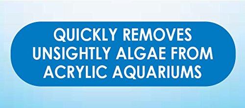 Algae SCRAPERS and Hand HELD Pads for Acrylic Aquariums (Pad,Aquarium Accessories) - 2 Pack 3