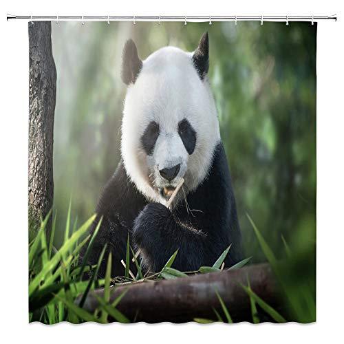 AMNYSF Verschiedene Tiere Bilder Landschaft Vorhang für die Dusche 177,8x 177,8cm Polyester-Schimmelresistent-Vorhänge, Wasserdicht, mit 12Haken Modern Multi 558 (April Showers-stoff)