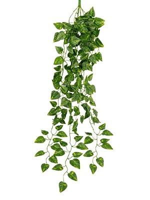 Sumchimamzuk 90cm Efeu Girlande Efeubusch Efeugirlande Efeuranke künstliche Kunstpflanze von sumchimamzuk - Du und dein Garten