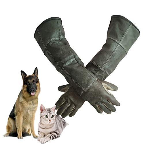 YLOVOW Guanti Anti-Morso/AntiGraffio per Animali, Guantoni Sicuri E Durevoli da 60 Cm, Guinzaglio di Cane Gatto Serpente Pappagallo Guerriero Protezione Animali Selvatici