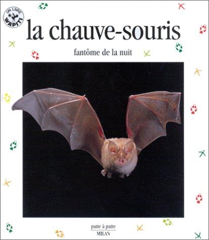 """<a href=""""/node/16564"""">La chauve-souris</a>"""