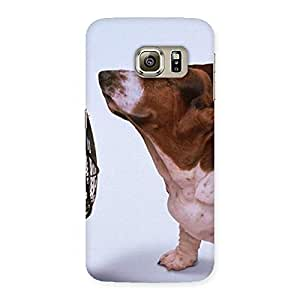 Cute Dog Fan Back Case Cover for Samsung Galaxy S6 Edge Plus